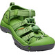 Keen Newport H2 Sandals Children green